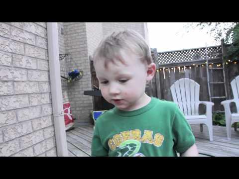 Junge will Fliege vor Tod bewahren