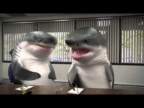Marktforschung bestätigt: Haie lieben Erdnussriegel