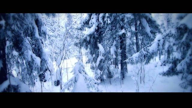 Der schwedische Winter