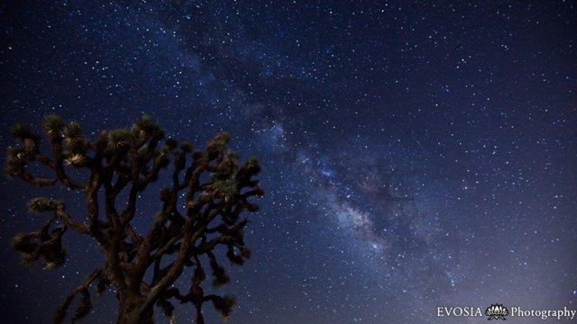 Meteoritenschauer-Milchstraßen-Timelapse
