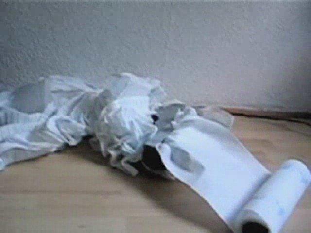 Papiershredder vs. Küchenrolle