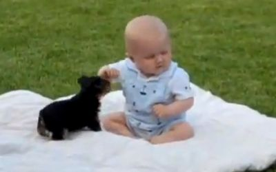 Baby_and_puppy
