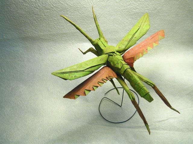 Unglaublich: Origami-Insekten aus einem Blatt Papier