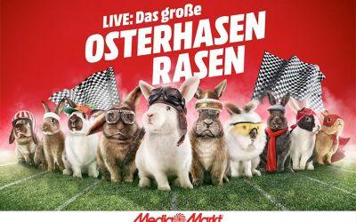 Das-grosse-Osterhasen-Rasen_01
