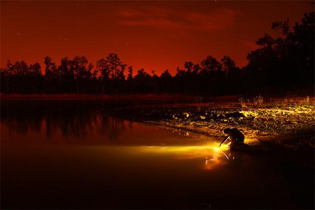 Fotografie: Lichtbilder von Dennis Calvert