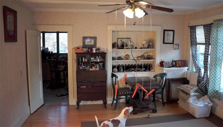 Hund vs. Ventilator-Möhren Dog-flying-carrots