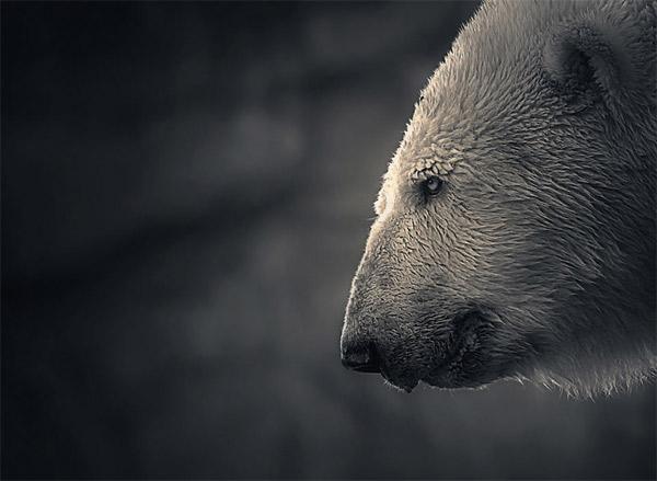 Fotografie: Holger Droste