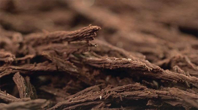 Videoportait eines Chocolatiers
