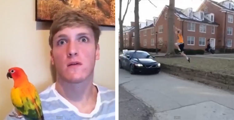 Vine-Compilation: Logan Paul