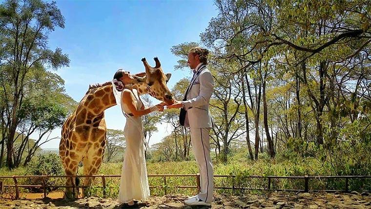 In 83 Tagen an 38 Orten weltweit heiraten Wedding-around-the-world_04