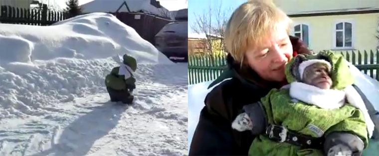 Äffchen in Kinderklamotten im Schnee