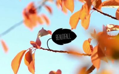 beautifall_01