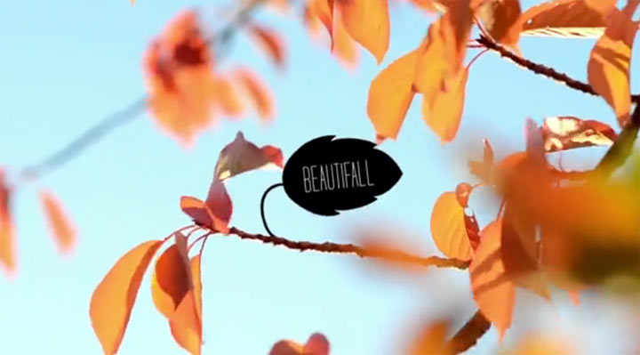 Beautifall Skateboarding