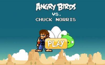 chucknorris_vs_videogames