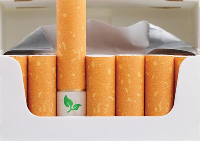 Zigaretten, aus denen Pflanzen werden