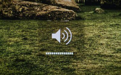 digitals_musicday
