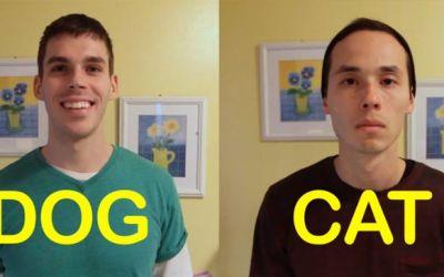 dogfriend_catfriend