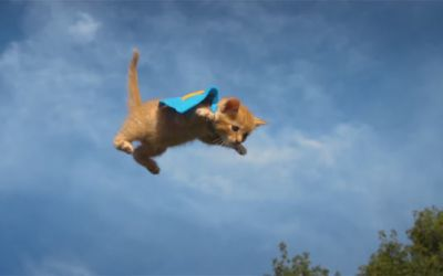 flying_kittens_and_puppies