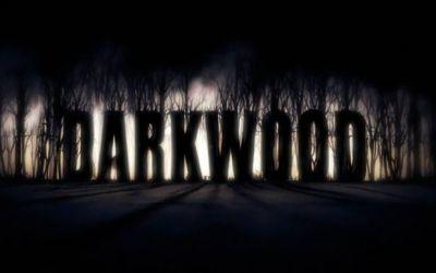 gameplay_darkwood