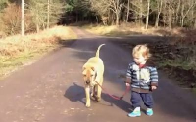 hundkindpfuetze