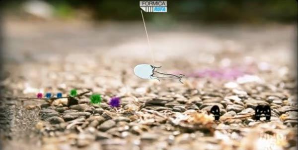 Die illustre Kleinstwelt der Ameisen