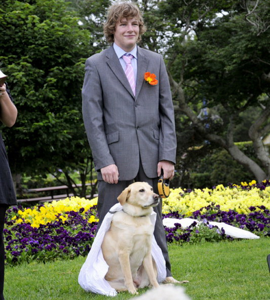 Man marries his dog