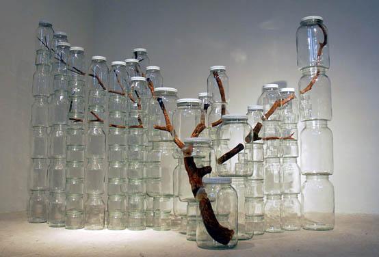 Baum in Glas