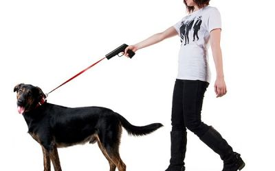 povodokus_dog_laser_leash