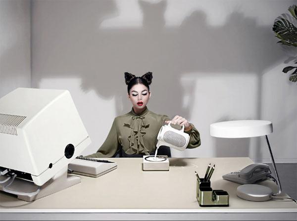 Secretary Cat