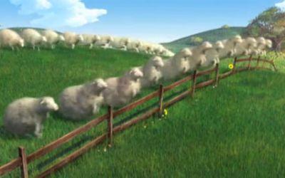 sheep_2008
