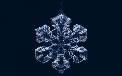 snow_flakes_makroshots_01