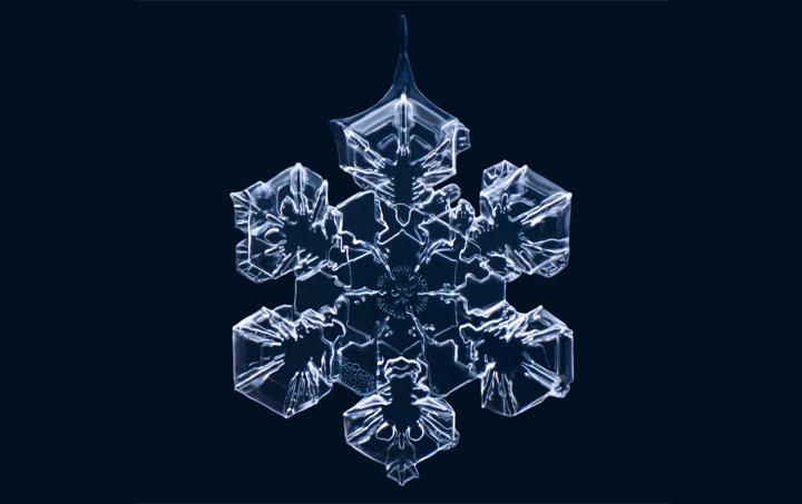 Cool: Makro-Aufnahmen von Schneeflocken