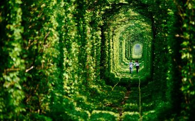 tunnel_of_love_01