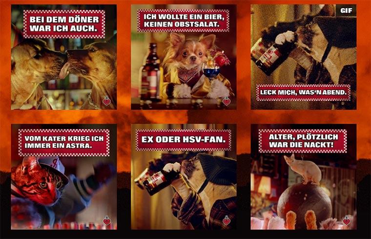 Tierische Party mit Astra Rakete Astra-Rakete_03