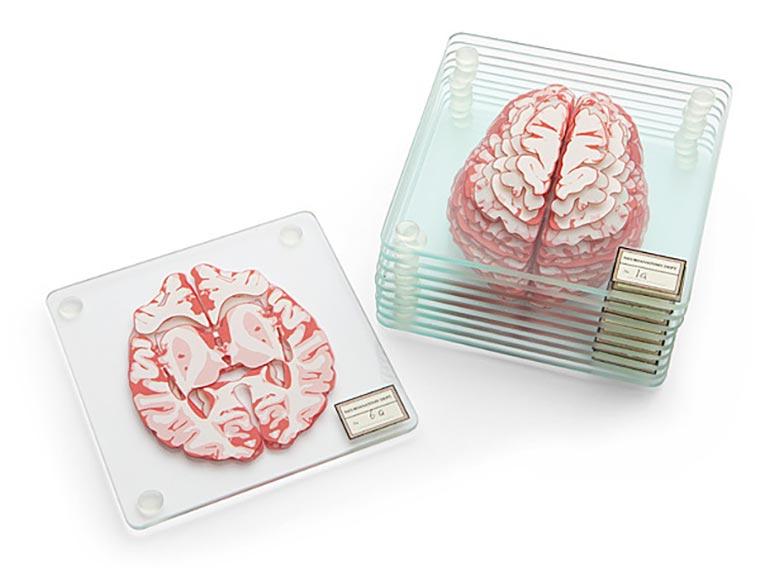 Gehirn-Untersetzer