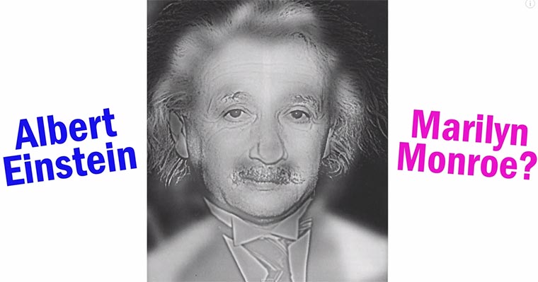 Marylin Monroe vs. Albert Einstein Sehtest