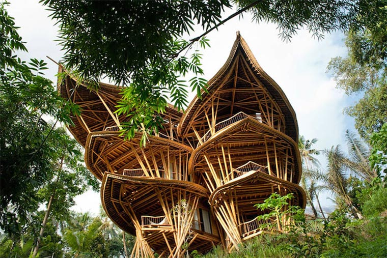 bamboo-house_02