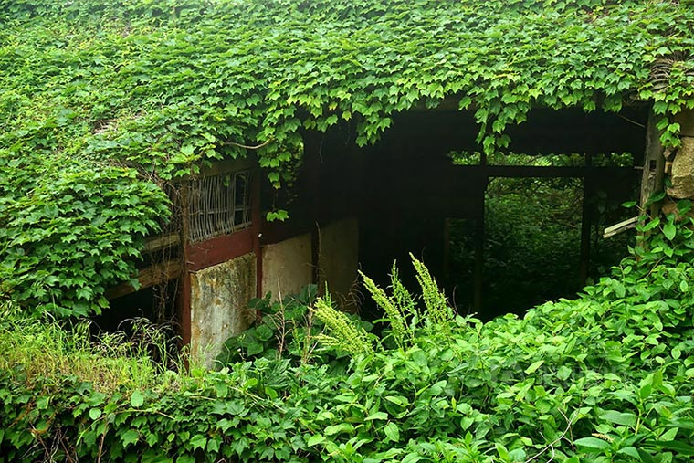 Natur holt sich verlassenes Dorf zurück abandoned-fisher-village_05