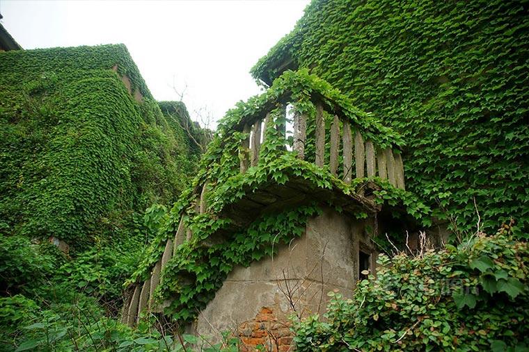 Natur holt sich verlassenes Dorf zurück abandoned-fisher-village_08
