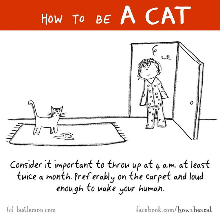 How To Be A Cat how-to-be-a-cat_03