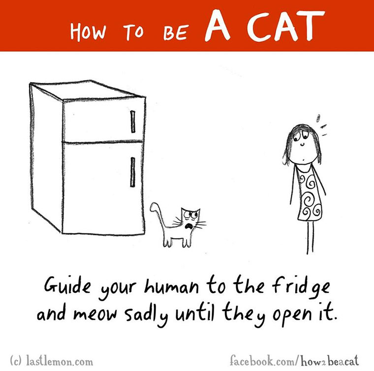 How To Be A Cat how-to-be-a-cat_04