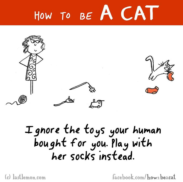 How To Be A Cat how-to-be-a-cat_06
