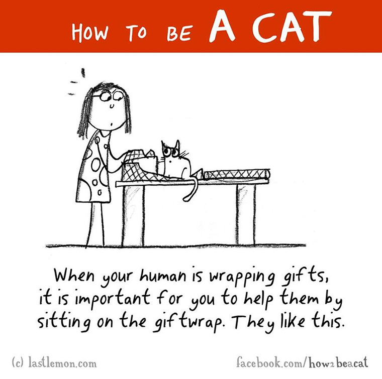 How To Be A Cat how-to-be-a-cat_11