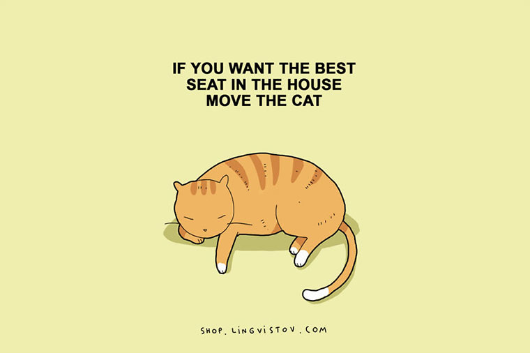 Cats-illustrations_04