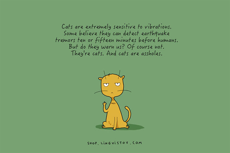 Cats-illustrations_10