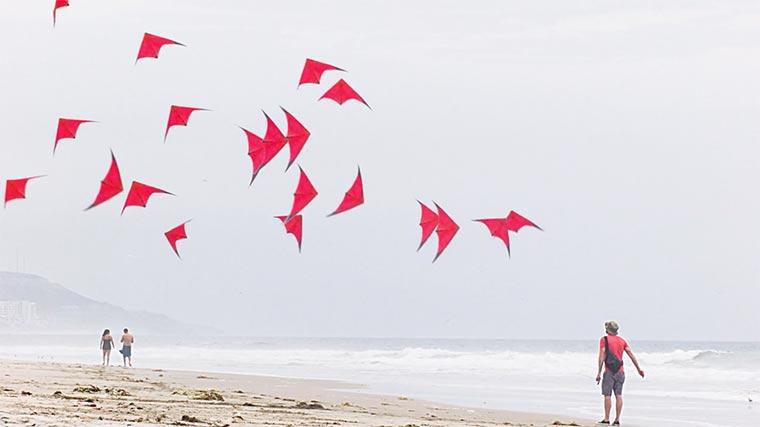 20 Minuten Drachenfliegen in einer Drachenfliegen