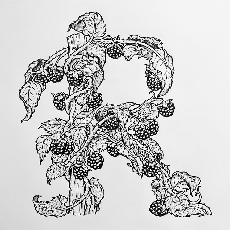 Illustriertes Snack-Alphabet Snack-Alphabet_06