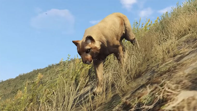 GTA V Wildlife Documentary