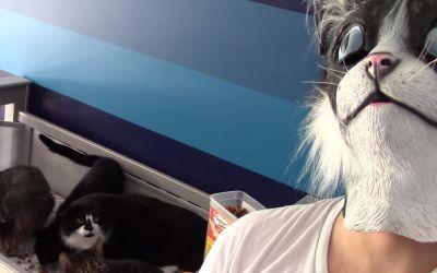 cat-mask-feeding