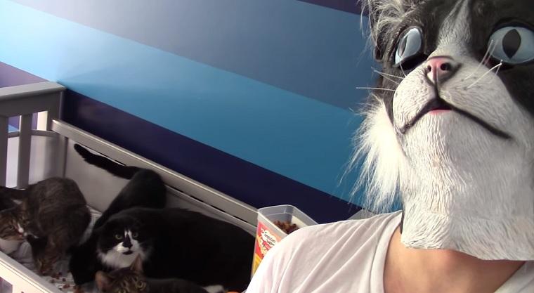 Mit Katzenmaske die Katzen füttern